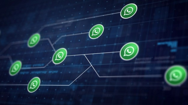 Porqué es importante contar con Whatsapp Business